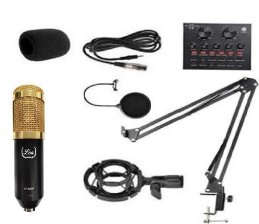 - Lea L-1800A Condenser Mikrofon Seti ve V8 Ses Kartı