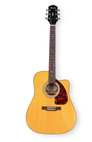 - Shadow JM-600MCE/NHG Dreadnought Cutaway Elektro Akustik Gitar